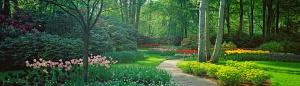 The Panoramic Garden