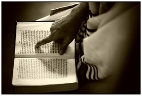 Path of Torah