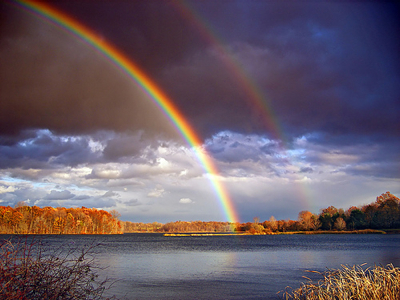 Rainbow Israel The Story Of One Righteous Man In An Evil Generation Almighty Commands Noah To Build Ark On A Hill Far From Water