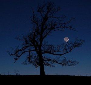 A still night