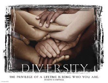 diversity-dayenu