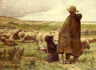 the_shepherd1