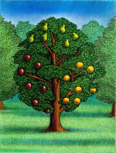 the-fruit-tree