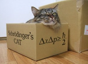 schrodingers-cat-in-a-box