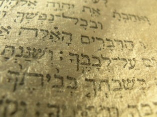torah_up_close