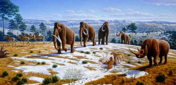 world-of-extinct-mammals