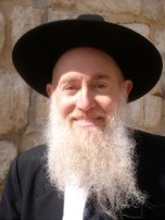 Rabbi Zelig Pliskin
